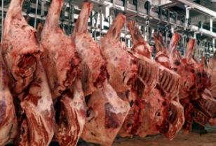 Orrore: smaltivano cisterne di sangue animale in un pozzo